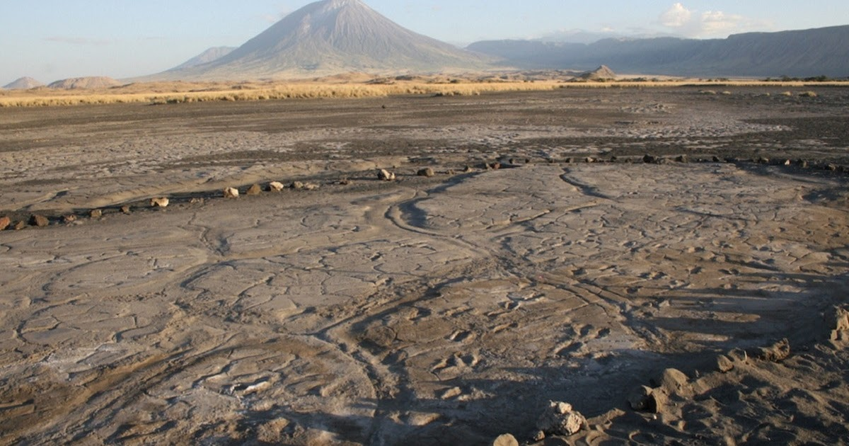 El análisis de las huellas halladas en Engare Sero, Tanzania, podrían indicar una división sexual del trabajo en el Pleistoceno tardío